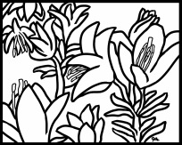 coloring fun:lilies of His field